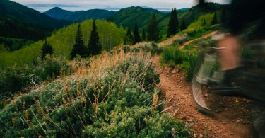 Wasatch Crest Trail - Park City Mountain Biking